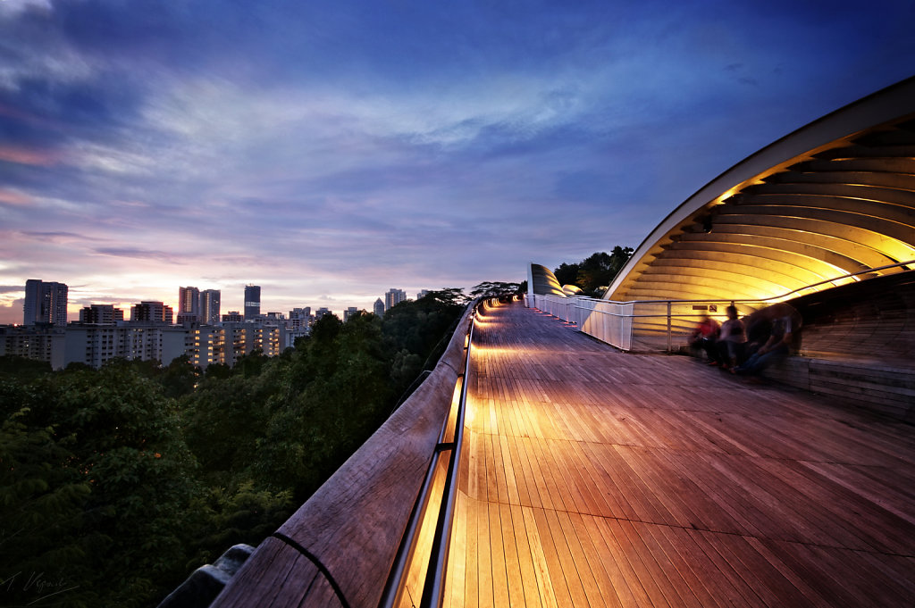 Henderson Waves, Singapore